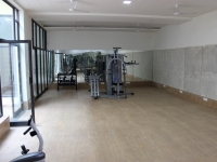 1718065412celebrity homes gym (3) (medium)_s.jpg